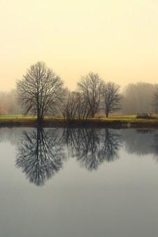 Reflection, Nature, Two Toned, Water, Natural