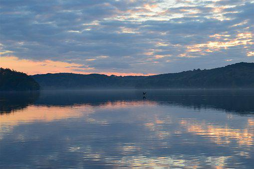 Lake, Sunset, Bird, Reflection, Flight, Nature, Evening