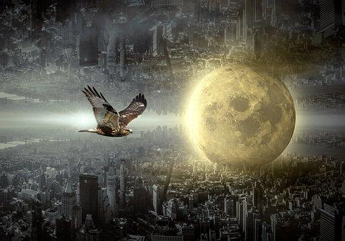 Fantasy, City, Moon, Hawk, Mood, Building, Surreal