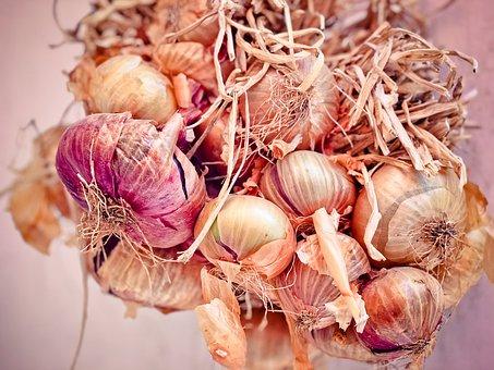 Onions, Shallots, Cream Onion, Kitchen Onion