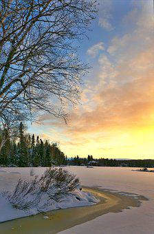Landscape, Winter, Cold, Nature, Trees, Birch, Clouds