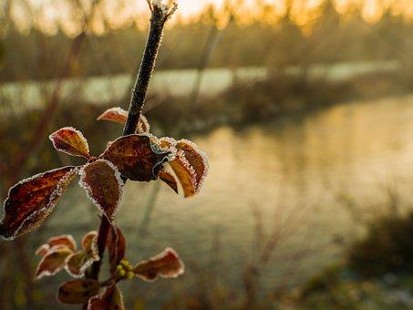 Sunrise, Winter, Landscape, Morning, Nature, Snow