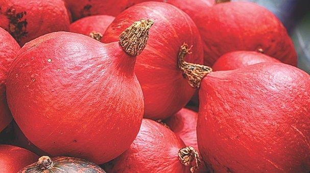 Pumpkins, Red, Autumn, Decoration, Decorative Squashes