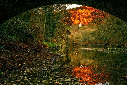 River, Water, Landscape, Riverbed, Nature, Bridge