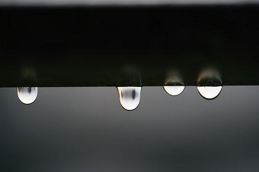 Drop Of Water, Drip, Wet, Water, Raindrop, Beaded