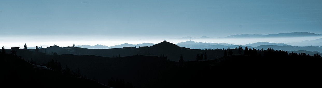 Summit, Hill, Specimen Trees, View, Foresight