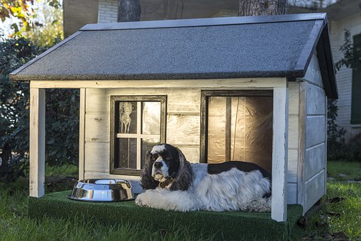 Dog Houses, Wooden Houses For Dogs, Kennels For Pets