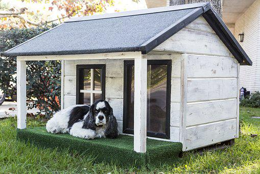Kennels For Pets, Dog Houses, Wooden Houses For Dogs