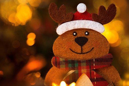 Christmas, Festival, Holidays, Reindeer