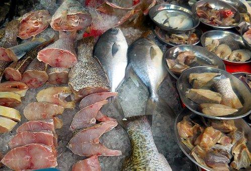 Fish, Sea, Market, Fish Market, Water, Nature, Animal