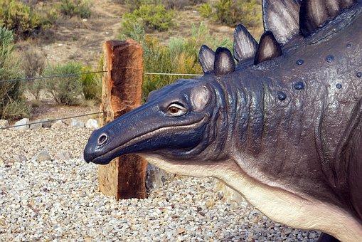 Stegosaurus Model, Stegosaurus, Statue, Dinosaur