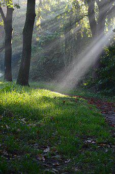 Rays Of Sun, Sun Rays, Sun, Light, Nature, Landscape