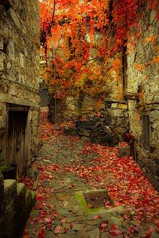 Autumn Mood, Autumn Colors, Alley, Backstreet
