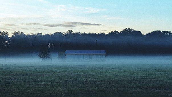 Barn, Fog, Nature, Rural, Autumn, Morning, Forest, Sky