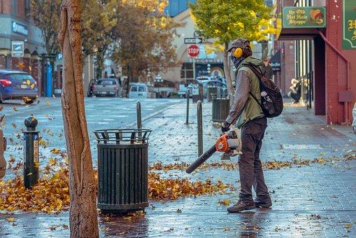 Fall, Blowing Street, Leaves, Blower, Street, Morning