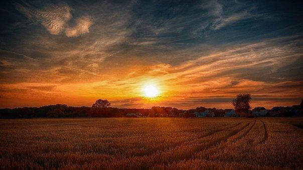 Sunset, Hagenbach, Pfalz, Fields, Hdr, Dusk, Rural