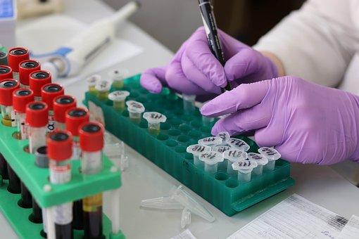 Laboratory, Medical, Medicine, Hand, Research, Lab