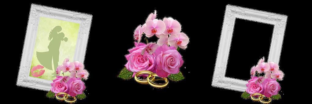 Wedding, Bride And Groom, Rings, Roses, Frame, Romance