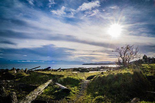 Seascape, Sun, Ocean, Sea, Water, Beach, Sky, Sand