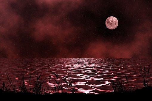 Dusk, Night, Sea, Water, Red, Moon, Nature, Ocean