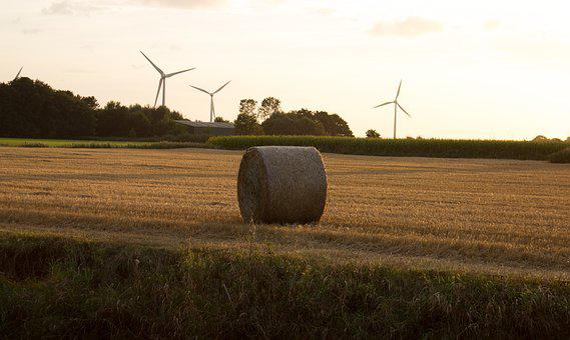 Autumn, Harvest, Straw, Land, Agriculture, Sun, Sunset