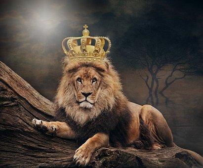 King, Lion, The Lion King, Crown, Animal World, Art