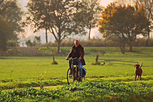 Man, Cyclist, Bicycle, Dog, Road, Field, Rural