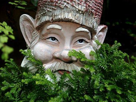 Gnome, Ferns, Garden, Statue