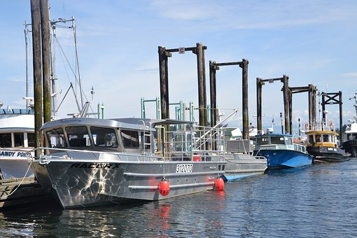 Boat, Harbor, Water, Sea, Port, Boats
