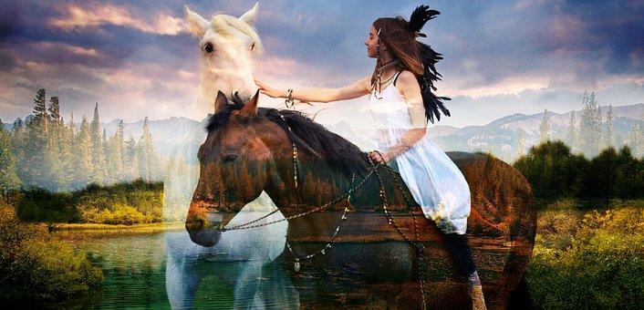Wild, Horses, Native, Beauty