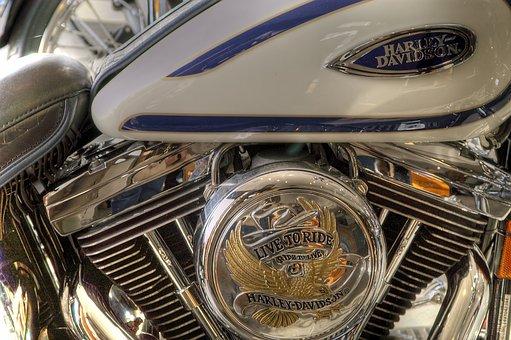 Harley Davidson, Motorbike, Harley, Motorcycle, Bike