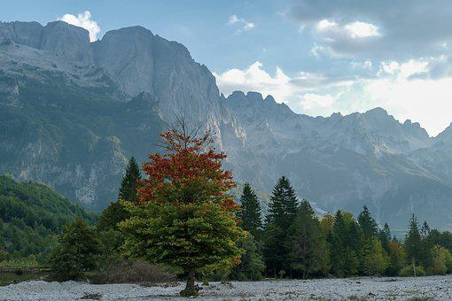 Valbona, North, Albania, Mountains, Sky, Forest, Nature