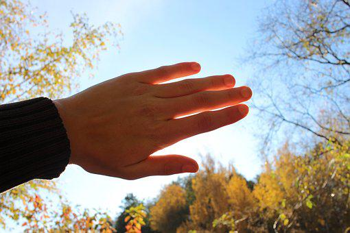 Hand, Dazzle, Hell, Sun, Sunshine, Summer, Autumn