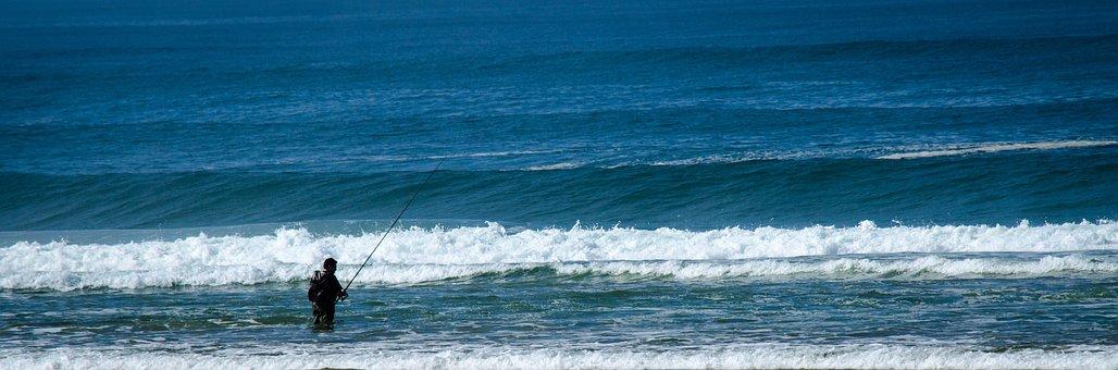 Atlantic, Fish, Angler, Sea, Vacations, Water, Beach