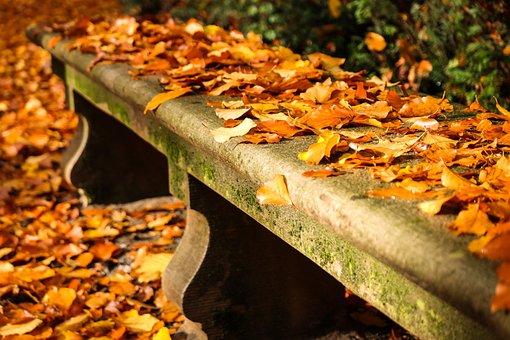 Autumn, Bank, Sit, Leaves, Rest, Romantic, Bench