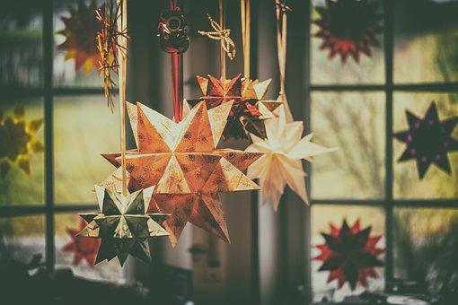 Star, Bascetta Star, Poinsettia, Christmas
