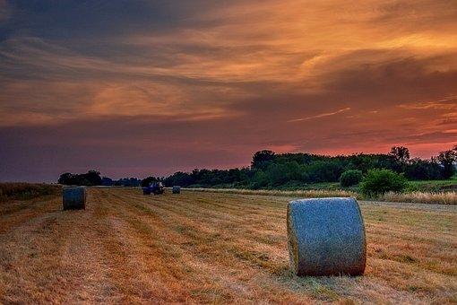 Landscape, Straw, Field, Harvest, Agriculture, Rural