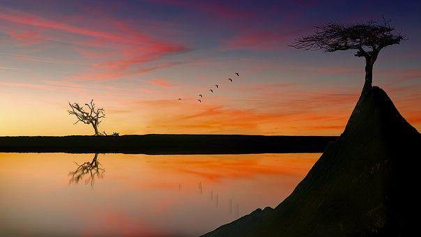 Lake, Sunset, Trees, Rock, Sky, Afterglow, Water