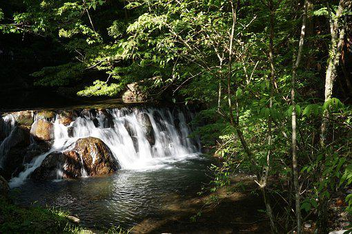 Waterfall, Forest, Japan, Landscape, Nature, River