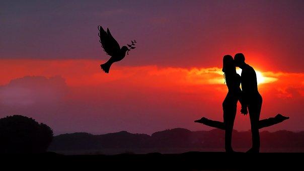 Sunrise, Couple, Dove, Bird, Nature, Romance, Symbol
