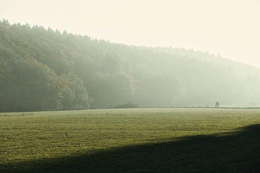 Landscape, Meadow, Green, Fog, Rest, Meditation, Mood