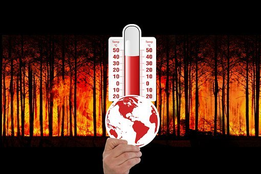 Climate Change, Thermometer, Forest Fire, Forest, Fire