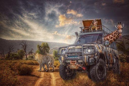 Safari, Jeep, Savannah, Adventure, All Terrain Vehicle