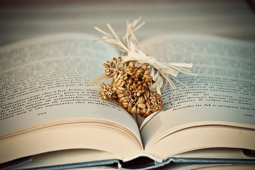 Book, Flowers, Dried Flowers, Bouquet, Map, Literature