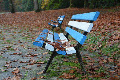 Bench, Fall, Park, Leaves, Sit, Blue