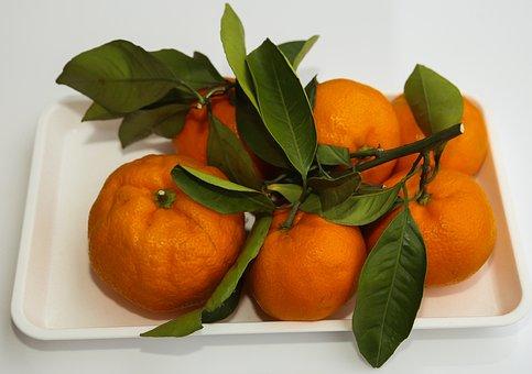 Oranges, Fruit, Vitamins, Healthy, Food, Ripe, Fresh