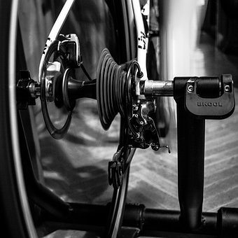 Cycling, Bicycle, Wheels, Leisure, Exercise, Activity