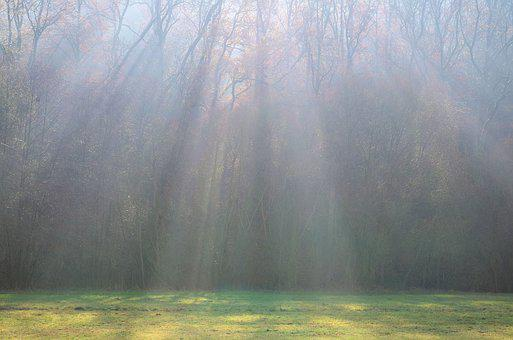 Light Beam, Sunbeam, Nature, Mystical, Landscape