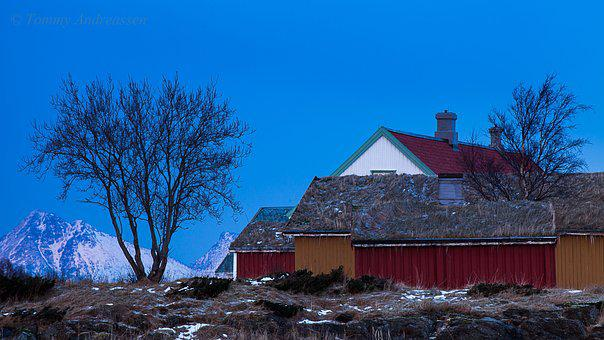 North-norway, Norway, Nordland, Winter, Landscape