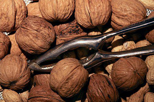 Nuts, Walnuts, Nutcracker, Food
